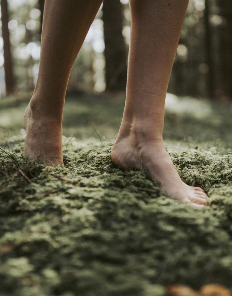 Im Urlaub im Joglland im Moos spazieren gehen
